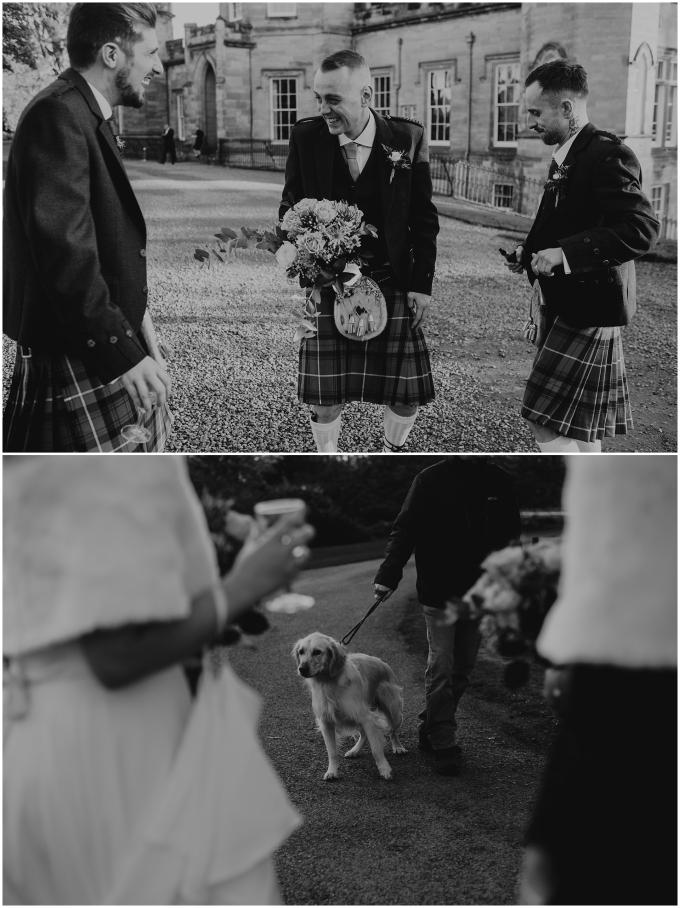 dog at a scottish wedding